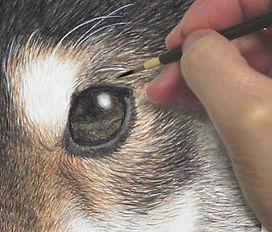 犬肖像画 精密画