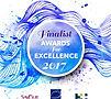 Awards 2017_Finalist.jpg