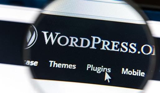 The Mastery Of The WordPress SEO Plugin