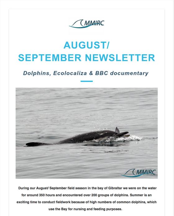 August/ September newsletter is around the corner!
