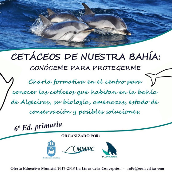 LETS LOOK FOR SOLUTIONS TO IMPROVE THE PRESENT STATE OF CONSERVATION OF THE CETACEANS -- Educational