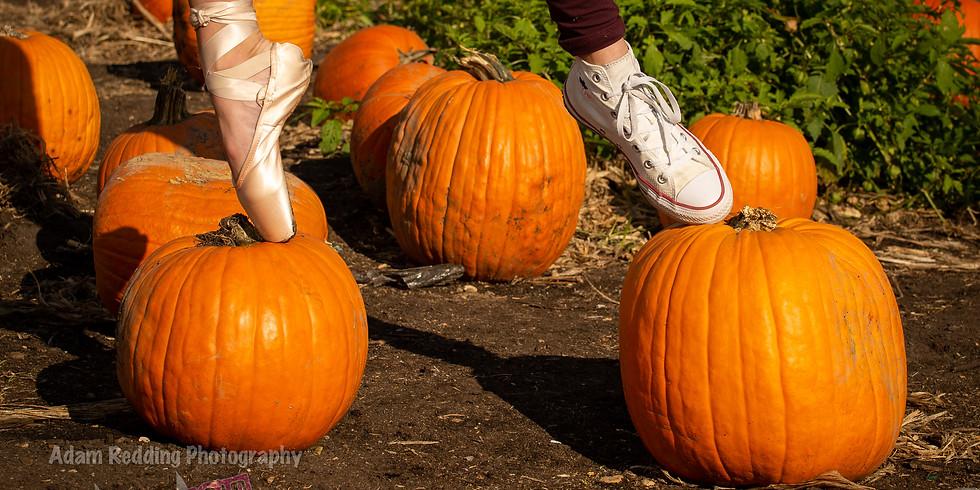Shady Brook Farm Pumpkin Patch
