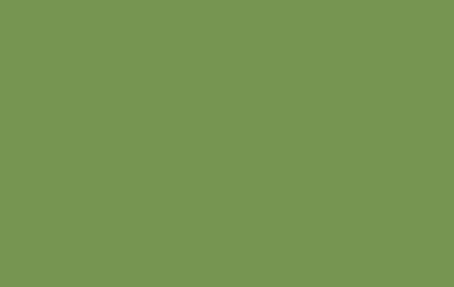 verde prato 528