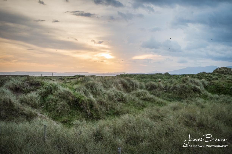 Dunes at Inch Beach