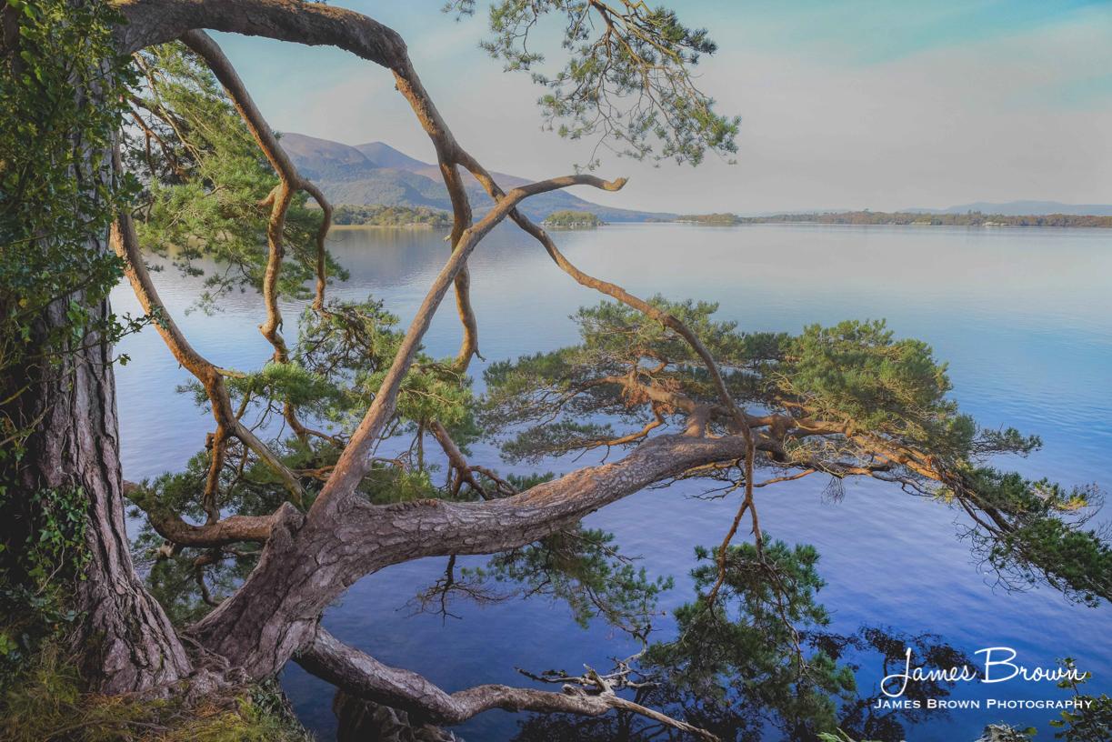 Lough Leane