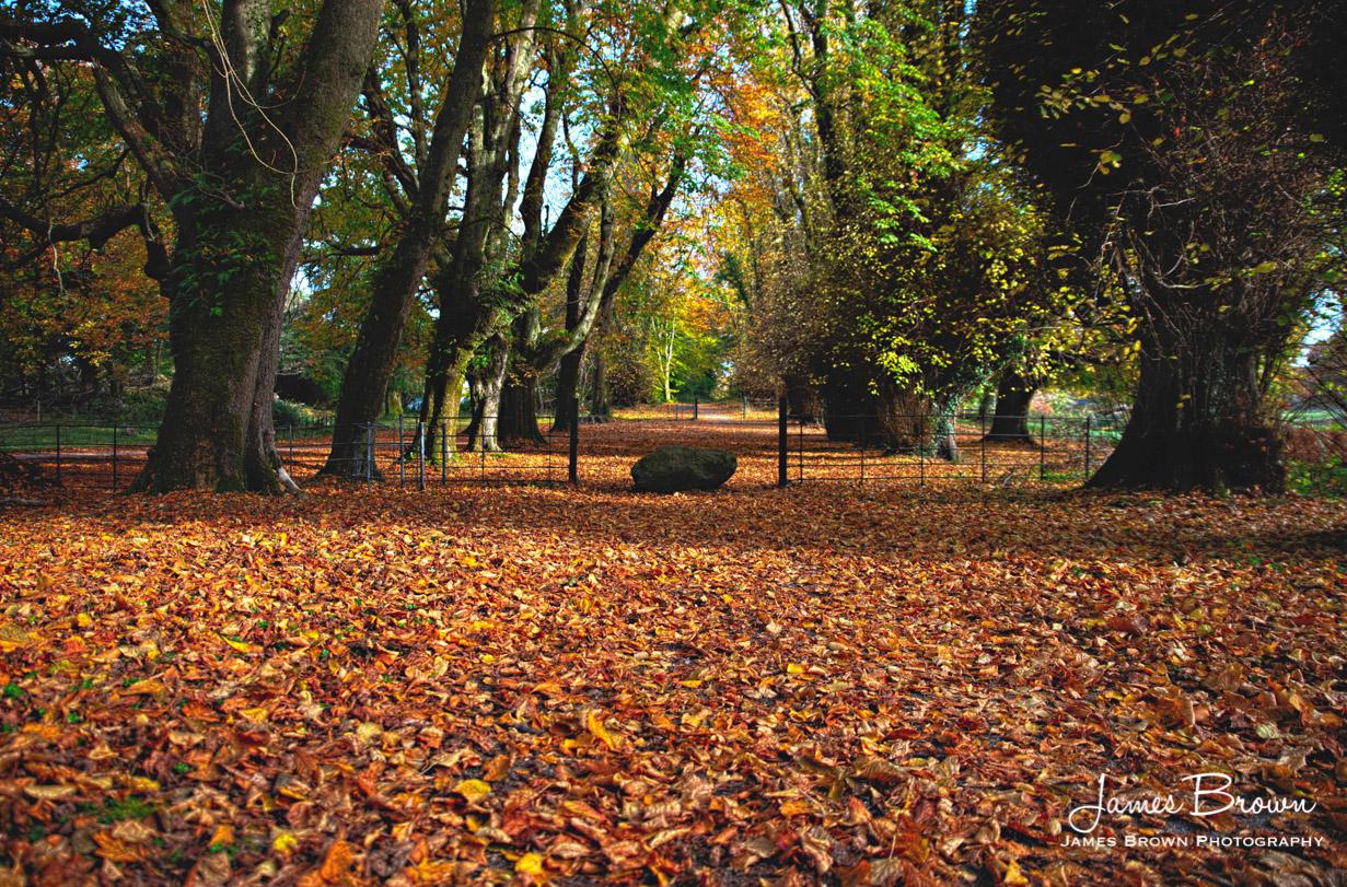 Friar's Walk Killarney