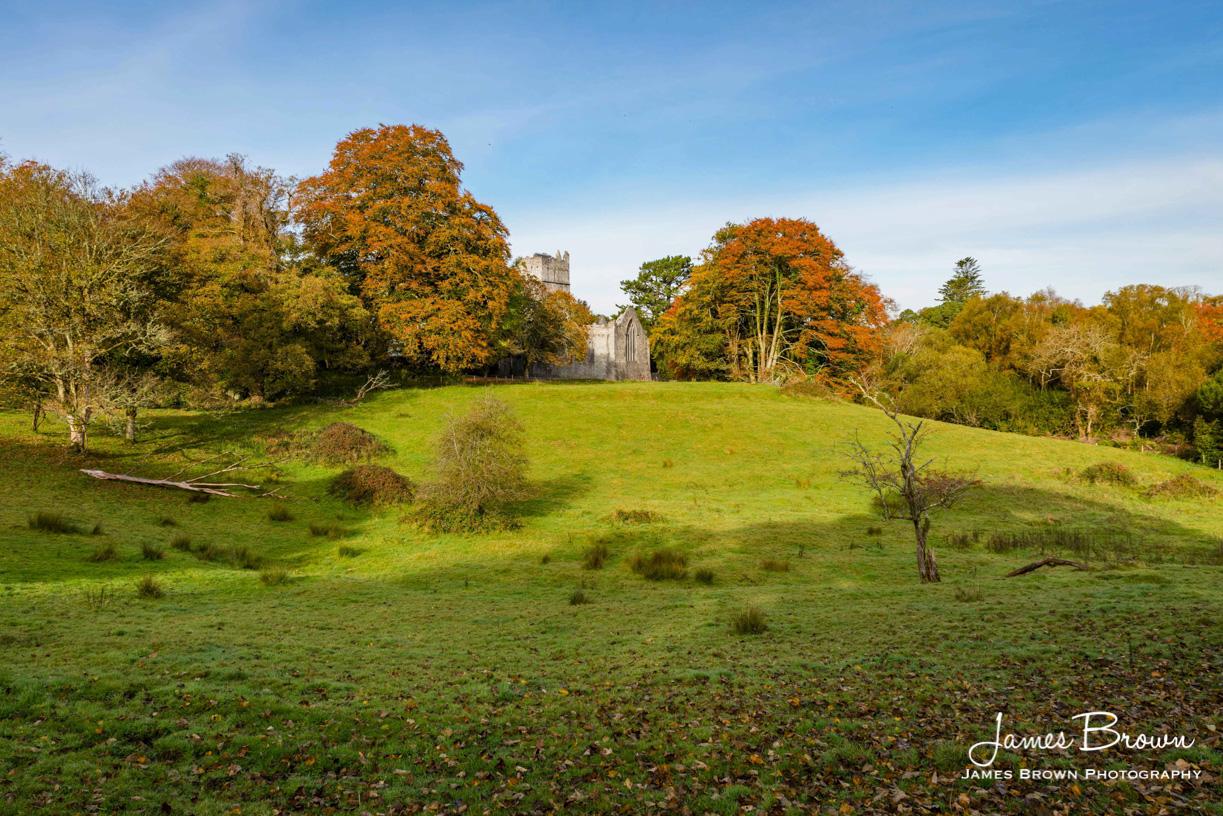 Near Muckross Abbey