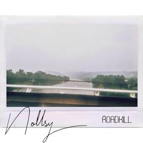 Roadkill by Nolley