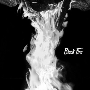 Black Fire by Everyday Dogs