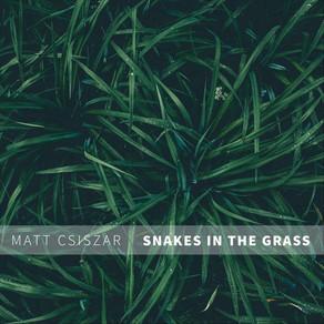 Snakes In The Grass by Matt Csiszar