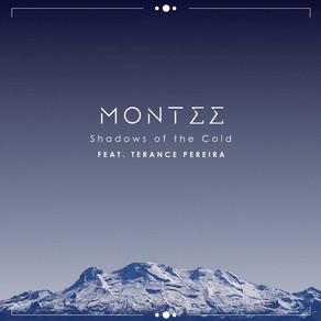 Montee - Shadows of the Cold feat Terance Pereira