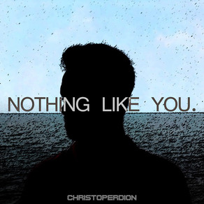 Nothing Like You by Christoper Dion