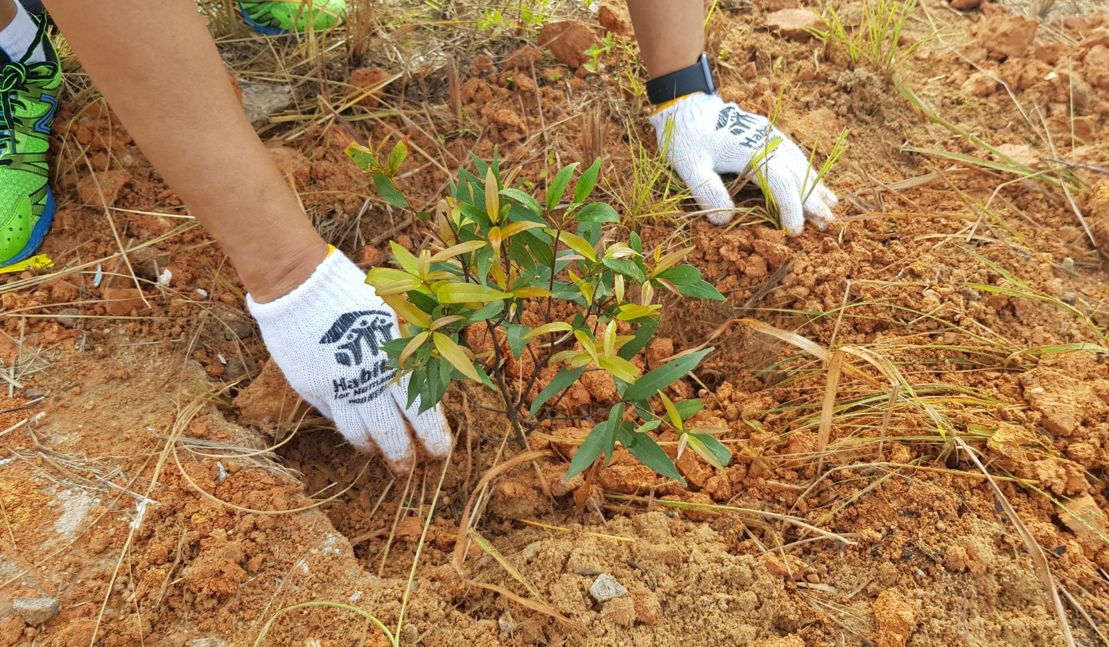4b2cfbf8-f806-4d92-88fdCycle Out Poverty 2018 Tree Planting-2d767540c813.JPG