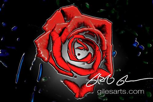 Rosario's Rose