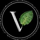 VFG Creations LLC, Web Design, VFG Web D