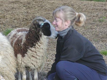 May: Bide A Wee Farm