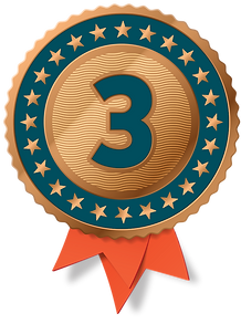 Medals_bronze with ribbon.png