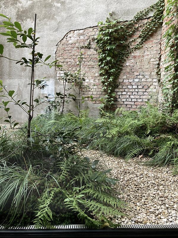Patio architecte de jardin Belgique.jpg