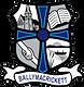 ballymacrickett primary school logo.png