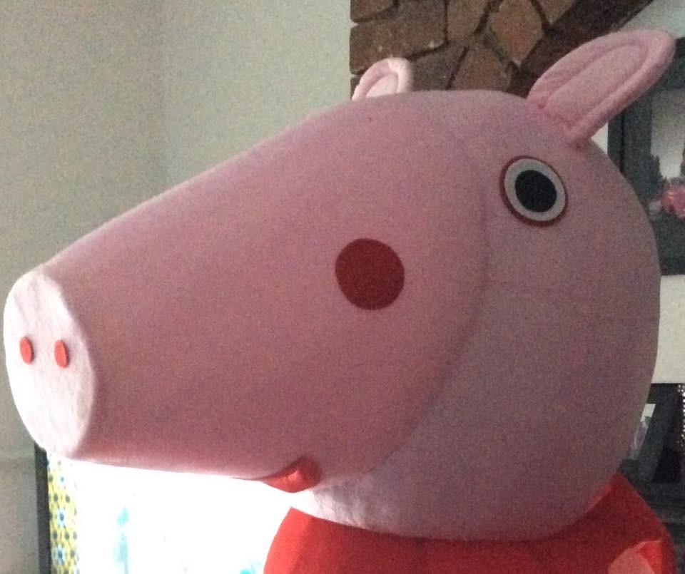 Pepper Pig Appearances