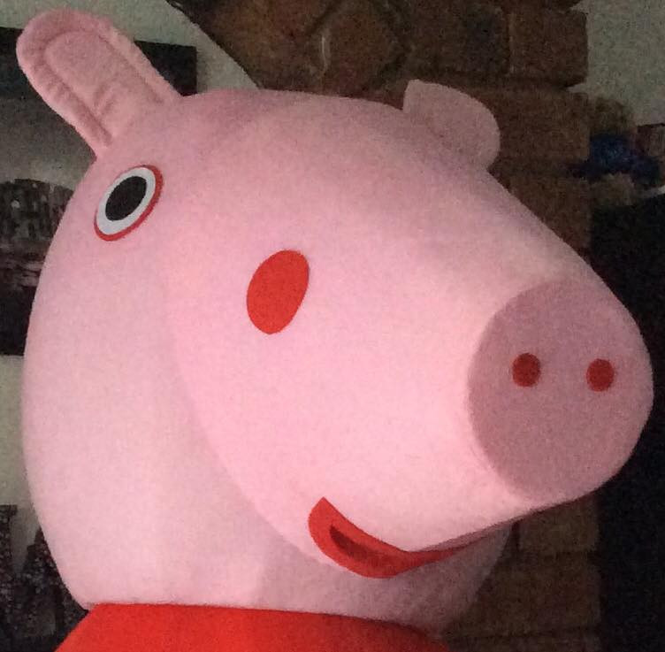 Pepper Pig Appearance