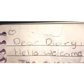 My Extensive Diary Entry