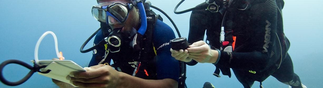 Avançado | Mergulho | Passeio | KrakenMergulho | Cabo Frio | Primeiro Mergulho | Cursos Mergulho