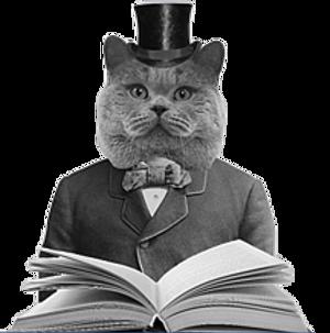 History Cat NBG.png