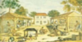 slaves on a tobacco plantation
