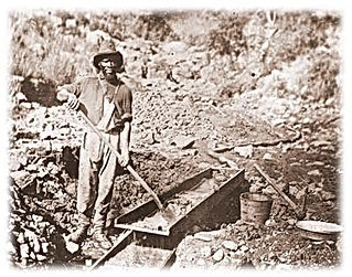 Afican-American gold rush miner