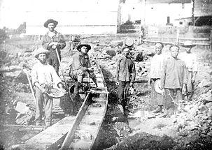 Gold Rush immigrants