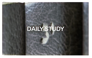 Daily-Study_edited.png