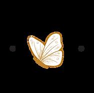 Panambi-Logo-WEB_OP01.png
