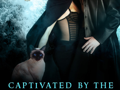 New Release: Captivated By The Winter King, by Mistral Dawn
