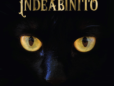 Indie Book Spotlight: Heroes of The Shadow, Blue Scar Indeabinito, by S. S. Frankowska
