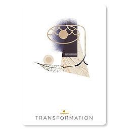transformation_01.jpg