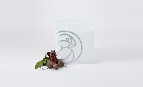 insulated mailing bag