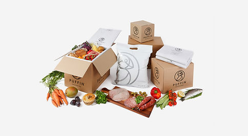 insulated packaging for shipping chilled food