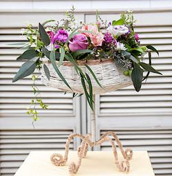 Tiempo de flores, flores, Coquimbo
