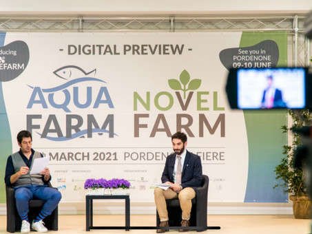 Presente e futuro delle colture fuori suolo: ricerca, potenzialità, applicazioni, investimenti