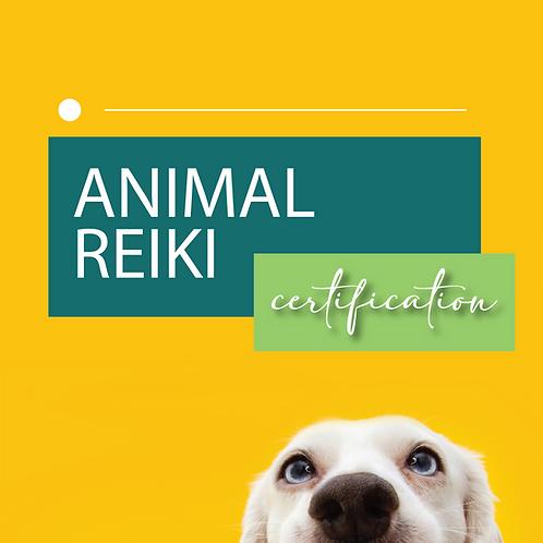 Animal Reiki Certification