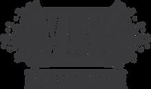 VIBE 2020 new logo.png