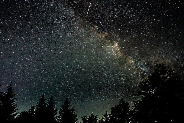 beautiful-silhouette-shot-trees-starry-night-sky.jpg