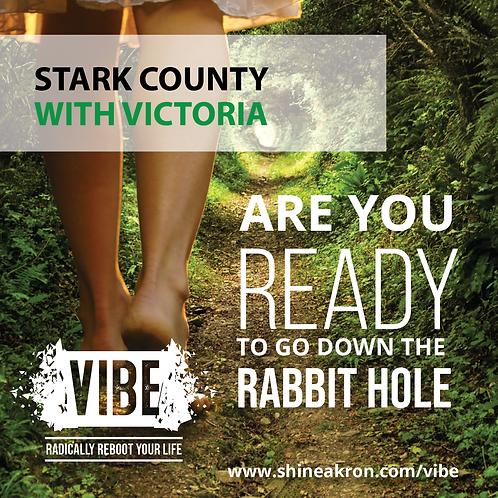 VIBE: Radically Reboot Your Life (Stark)