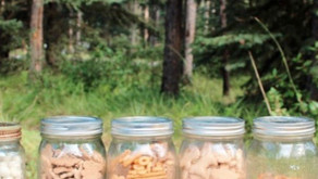 6 Ways To Reduce Waste Camping + Zero Waste Camping Checklist For The Whole Family