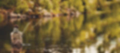 Fishing_Fiske_285834947.jpg