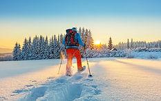 SNOWSHOW SAFARI.jpg