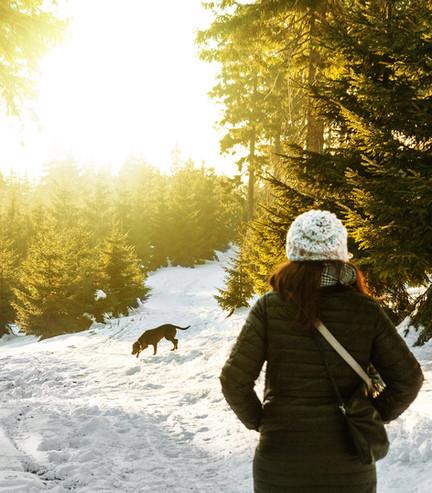 bardufoss hoell walk the dog snow.jpg