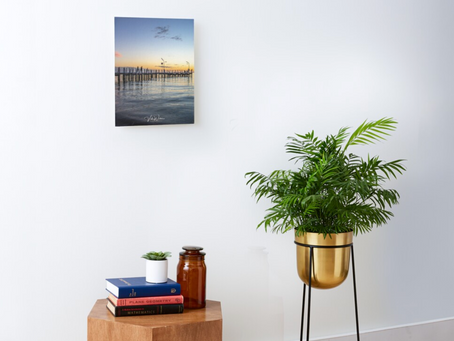 Safety Beach Jetty Canvas Mounted Print Purchased