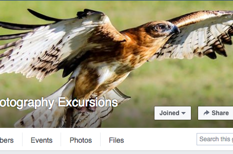 Facebook banner feature by Melbourne Photography Excursions